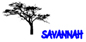 Savannah Process Systems
